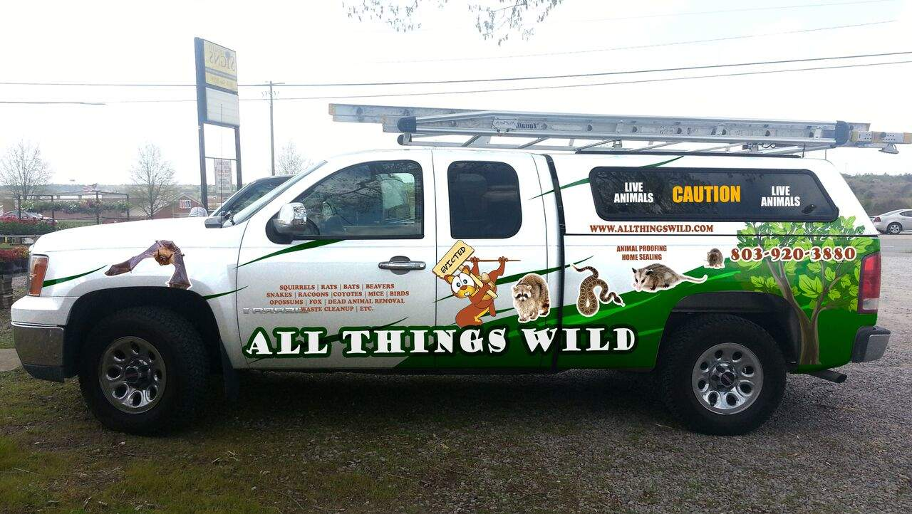 all things wild pest control